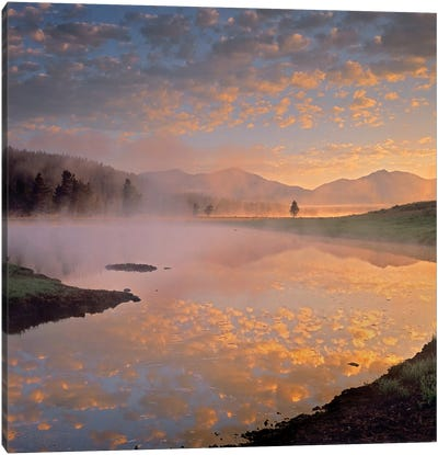 Absaroka Range From Alum Creek, Yellowstone National Park, Wyoming Canvas Art Print
