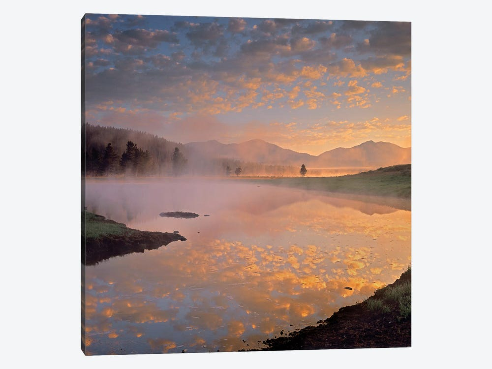 Absaroka Range From Alum Creek, Yellowstone National Park, Wyoming by Tim Fitzharris 1-piece Canvas Artwork