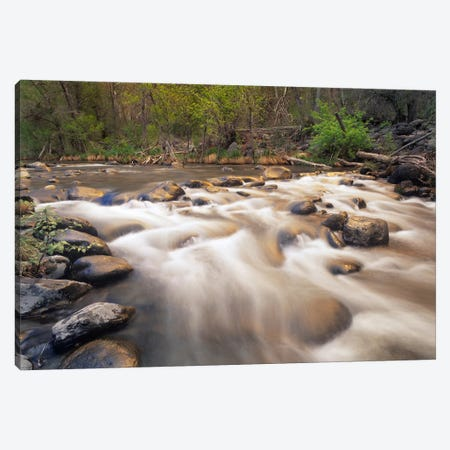 Oak Creek At Grasshopper Point, Sedona, Arizona Canvas Print #TFI701} by Tim Fitzharris Art Print