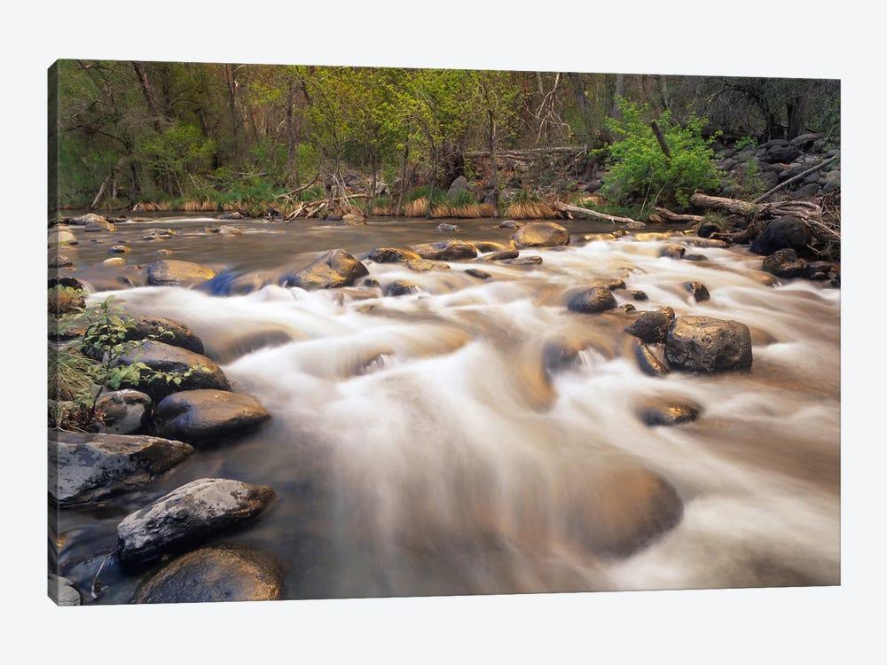 Oak Creek At Grasshopper Point, Sedona, Arizona by Tim Fitzharris 1-piece Canvas Art