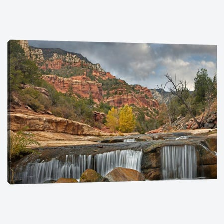 Oak Creek In Slide Rock State Park Near Sedona, Arizona I Canvas Print #TFI702} by Tim Fitzharris Canvas Art Print