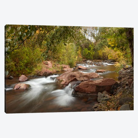 Oak Creek In Slide Rock State Park Near Sedona, Arizona II Canvas Print #TFI703} by Tim Fitzharris Canvas Print