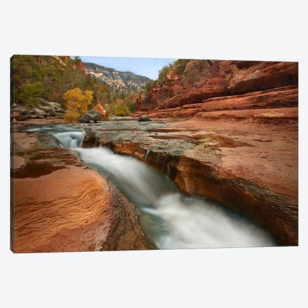 Oak Creek In Slide Rock State Park Near Sedona, Arizona III Canvas Print #TFI704} by Tim Fitzharris Canvas Art