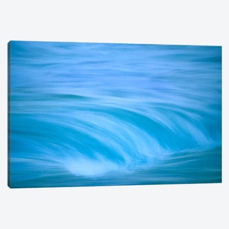 Ocean Waves, Hawaii Canvas Print #TFI710} by Tim Fitzharris Canvas Art