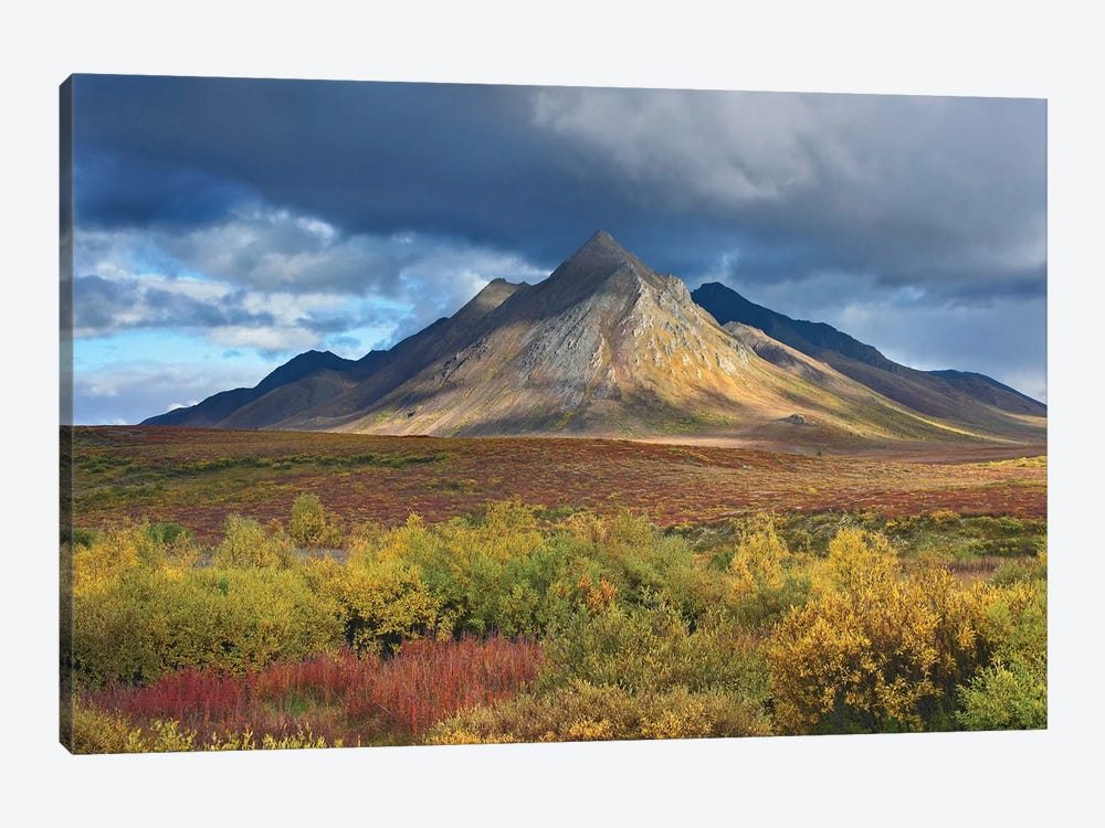 Ogilvie Mountains, Tombstone Territorial Park, Yukon, Canada 1-piece Canvas Art