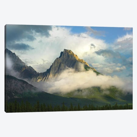 Opal Range Surrounded By Fog, Kananaskis Country, Alberta, Canada Canvas Print #TFI717} by Tim Fitzharris Canvas Art Print