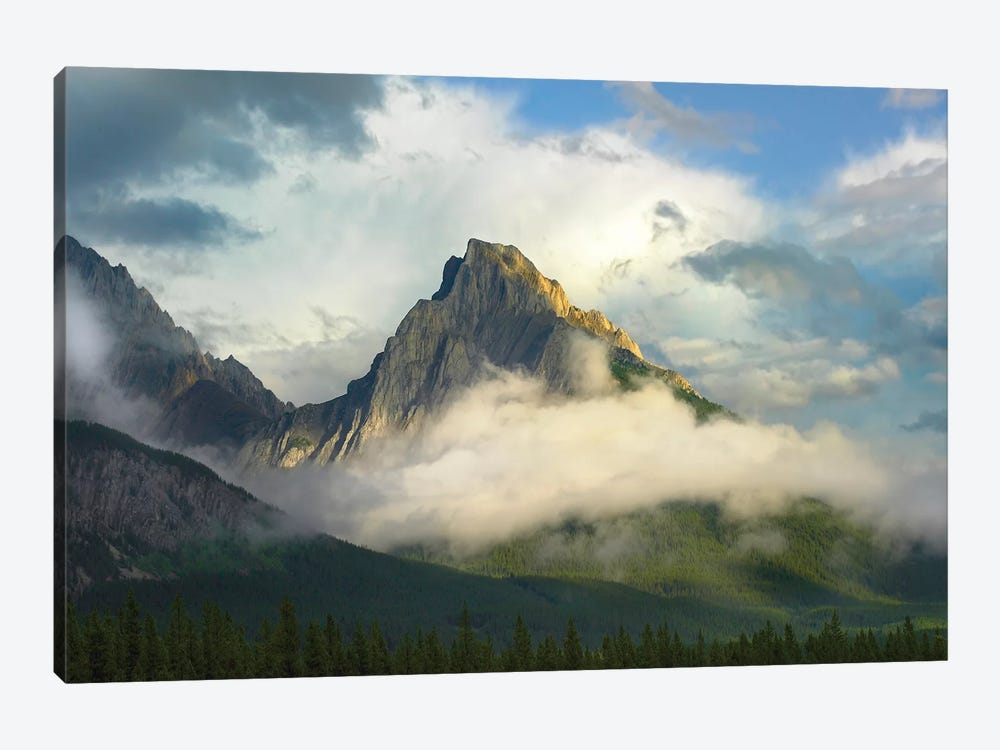 Opal Range Surrounded By Fog, Kananaskis Country, Alberta, Canada by Tim Fitzharris 1-piece Canvas Art Print