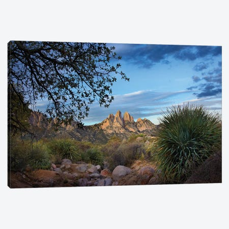 Organ Mountains Near Las Cruces, New Mexico I Canvas Print #TFI739} by Tim Fitzharris Canvas Art