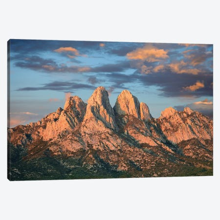 Organ Mountains Near Las Cruces, New Mexico II Canvas Print #TFI740} by Tim Fitzharris Canvas Art Print