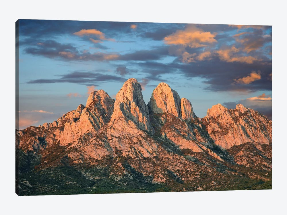 Organ Mountains Near Las Cruces, New Mexico II by Tim Fitzharris 1-piece Art Print