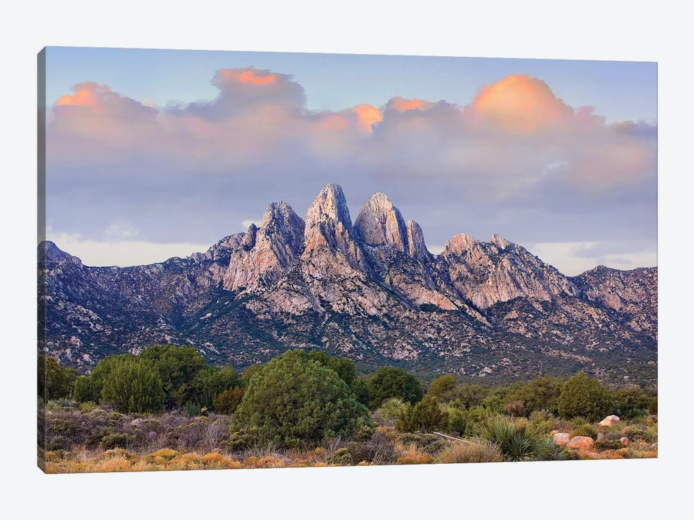 Organ Mountains, Chihuahuan Desert, New Mexico I by Tim Fitzharris 1-piece Canvas Art