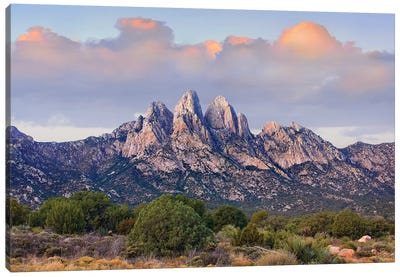 Organ Mountains, Chihuahuan Desert, New Mexico I Canvas Art Print