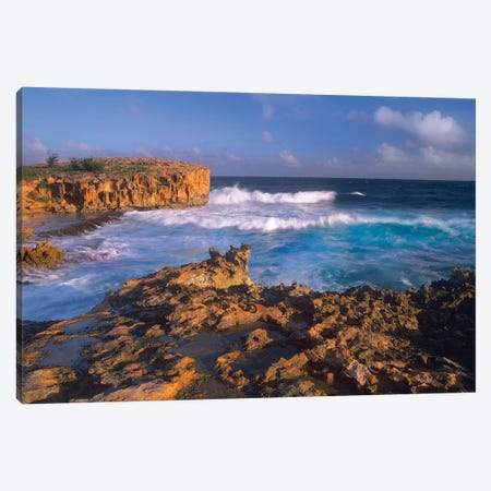 Pacific Ocean Waves And Cliffs At Keoneloa Bay, Kauai, Hawaii Canvas Print #TFI747} by Tim Fitzharris Canvas Art