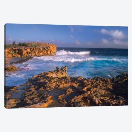 Pacific Ocean Waves And Cliffs At Keoneloa Bay, Kauai, Hawaii Canvas Print #TFI747} by Tim Fitzharris Canvas Art