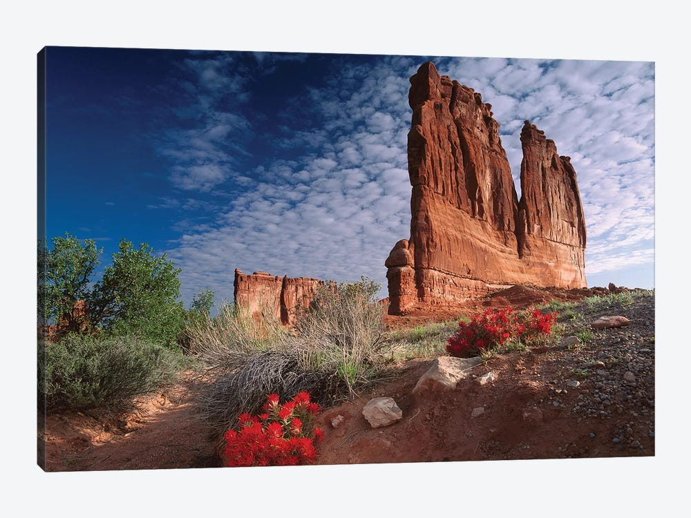 Paintbrush And The Organ Rock, Arches National Park, Utah II by Tim Fitzharris 1-piece Canvas Art Print