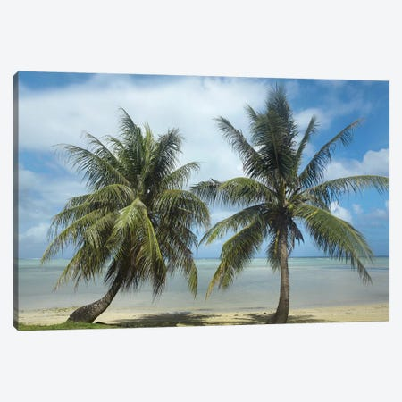 Palm Trees, Agana Beach, Guam Canvas Print #TFI760} by Tim Fitzharris Art Print
