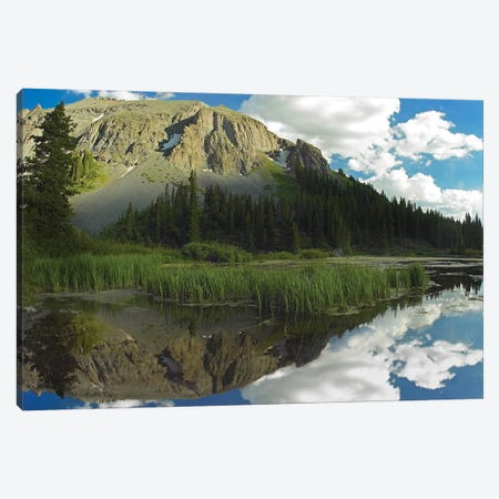 Palmyra Peak Reflected In Alta Lake, Colorado Canvas Print #TFI763} by Tim Fitzharris Canvas Print