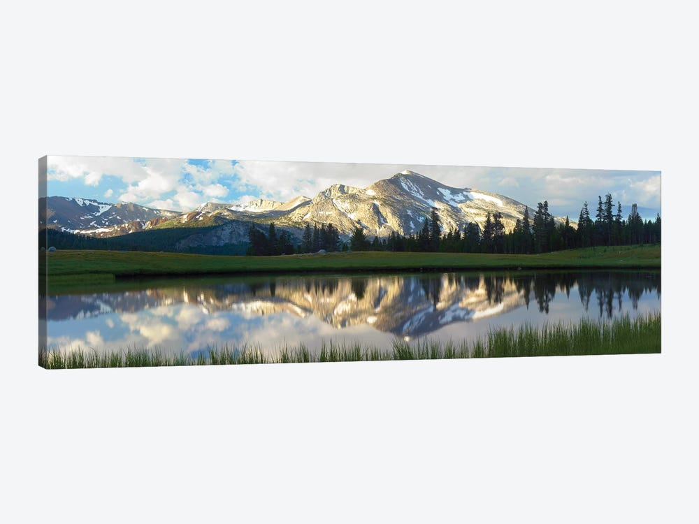 Panorama Of Mammoth Peak And Kuna Crest Reflected In Seasonal Pool,Upper Dana Meadow, Yosemite National Park, California by Tim Fitzharris 1-piece Art Print