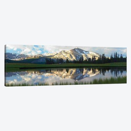 Panorama Of Mammoth Peak And Kuna Crest Reflected In Seasonal Pool,Upper Dana Meadow, Yosemite National Park, California Canvas Print #TFI766} by Tim Fitzharris Canvas Wall Art