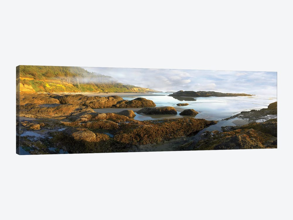 Panorama Of Neptune Beach With Exposed Tide Pools At Low Tide, Oregon by Tim Fitzharris 1-piece Canvas Art