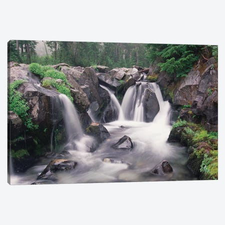 Paradise River Cascade, Mt Rainier National Park, Washington Canvas Print #TFI780} by Tim Fitzharris Art Print