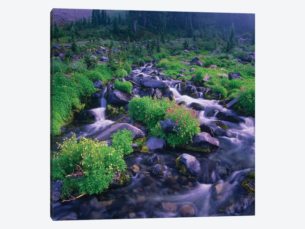 Paradise River With Wildflowers, Mount Rainier National Park, Washington by Tim Fitzharris 1-piece Art Print