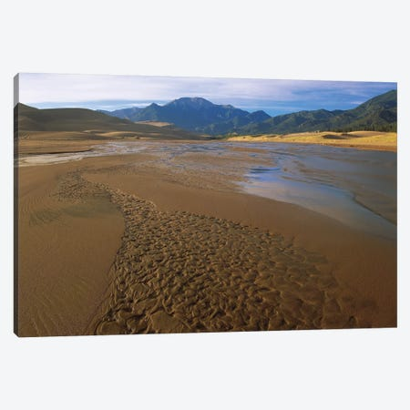 Patterns In Stream Bed, Great Sand Dunes National Monument, Colorado Canvas Print #TFI784} by Tim Fitzharris Canvas Artwork