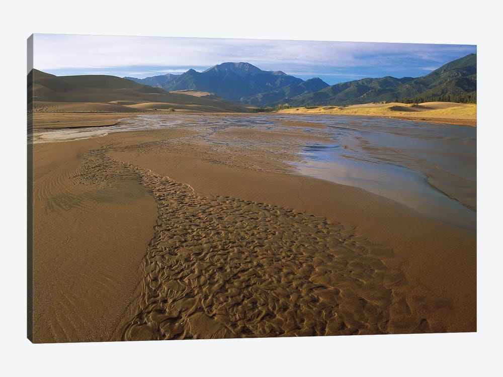Patterns In Stream Bed, Great Sand Dunes National Monument, Colorado by Tim Fitzharris 1-piece Canvas Print