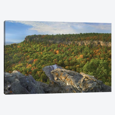 Petit Jean State Park, Arkansas Canvas Print #TFI787} by Tim Fitzharris Canvas Artwork
