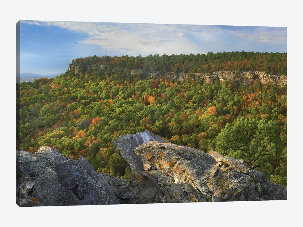 Petit Jean State Park, Arkansas by Tim Fitzharris 1-piece Canvas Artwork
