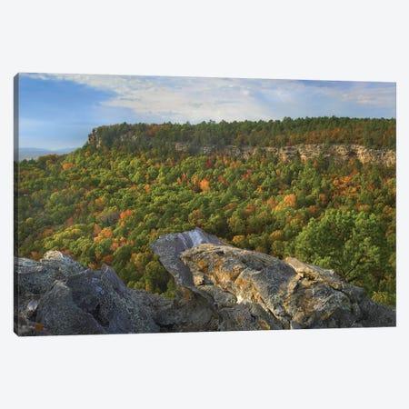 Petit Jean State Park, Arkansas Canvas Print #TFI787} by Tim Fitzharris Canvas Artwork
