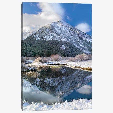 Phi Kappa Mountain Reflected In River, Idaho Canvas Print #TFI789} by Tim Fitzharris Art Print