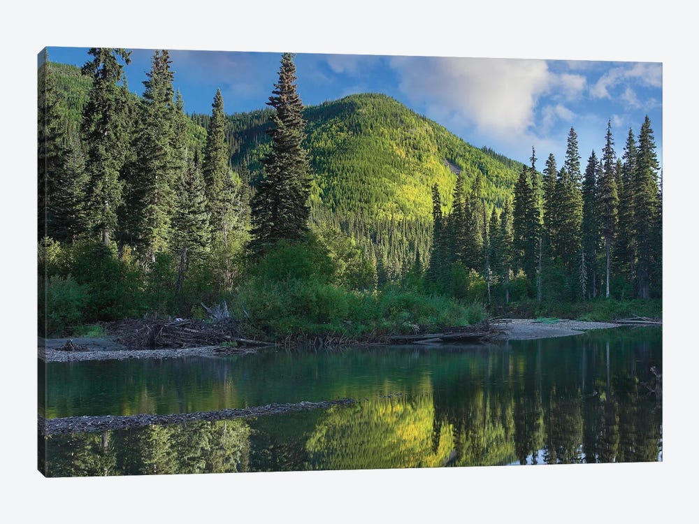 Pine River, Hart Ranges, British Columbia, Canada by Tim Fitzharris 1-piece Canvas Art