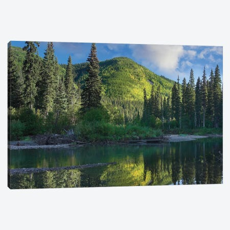 Pine River, Hart Ranges, British Columbia, Canada Canvas Print #TFI792} by Tim Fitzharris Canvas Art