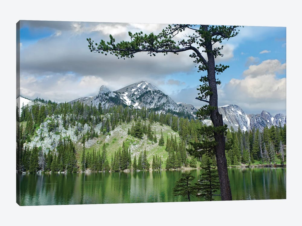 Pine Trees Reflected In Fairy Lake, Montana by Tim Fitzharris 1-piece Canvas Wall Art