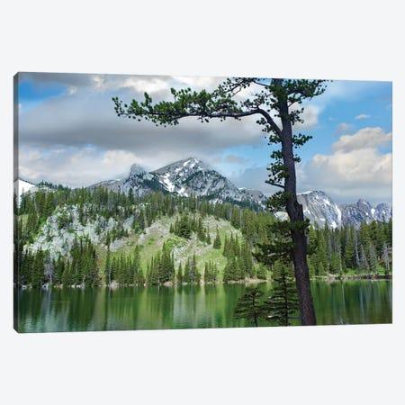 Pine Trees Reflected In Fairy Lake, Montana Canvas Print #TFI794} by Tim Fitzharris Art Print
