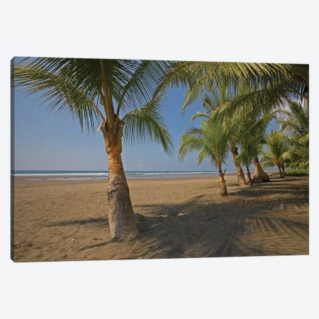Playa Esterillos Este, Puntarenas, Costa Rica Canvas Print #TFI799} by Tim Fitzharris Canvas Wall Art