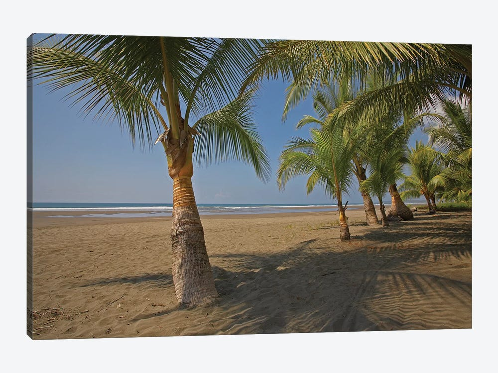 Playa Esterillos Este, Puntarenas, Costa Rica by Tim Fitzharris 1-piece Canvas Print
