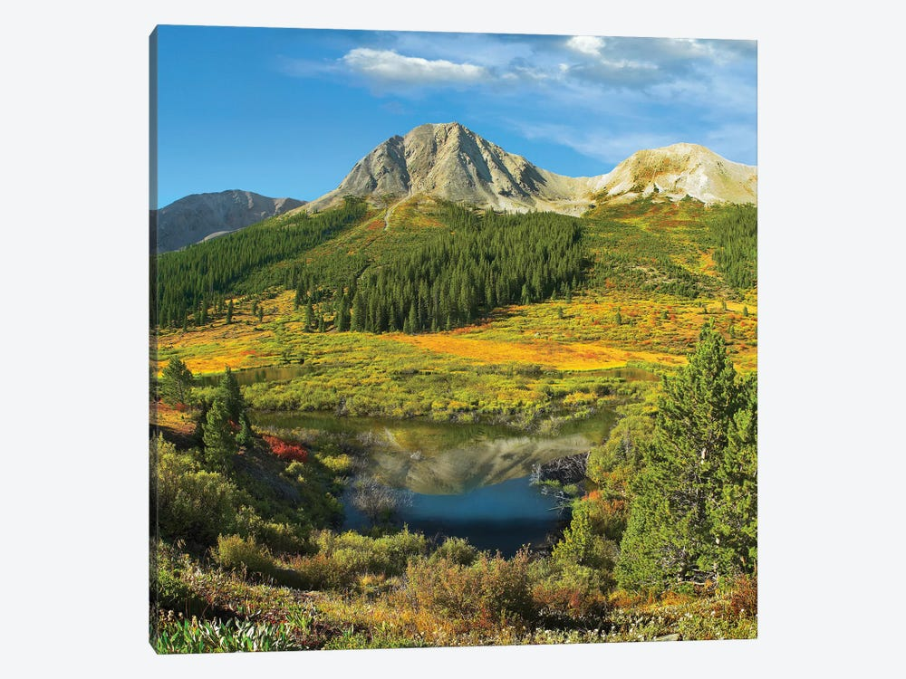 Pond And Green Mountain, Green Mountain National Forest, Colorado by Tim Fitzharris 1-piece Canvas Artwork