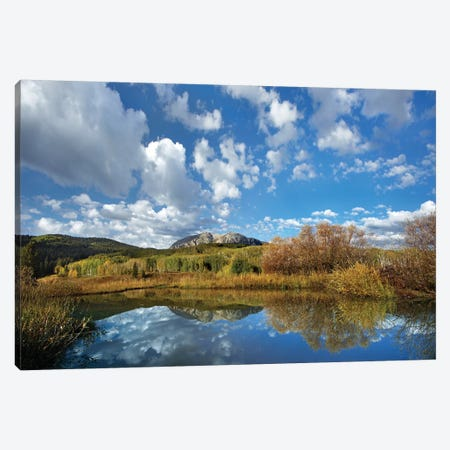Pond Near East Beckwith Mountain, West Elk Wilderness, Colorado Canvas Print #TFI805} by Tim Fitzharris Canvas Art Print