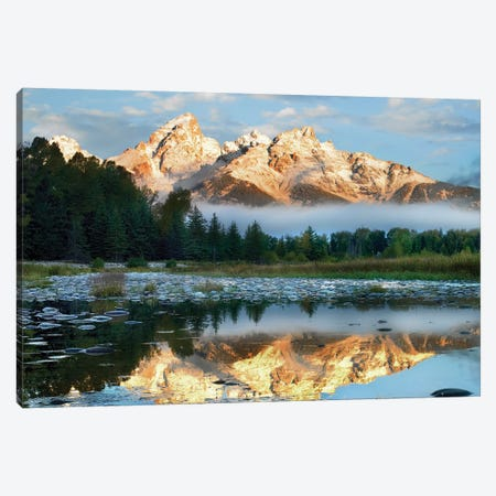 Pond Reflecting Grand Tetons, Grand Teton National Park, Wyoming Canvas Print #TFI807} by Tim Fitzharris Art Print