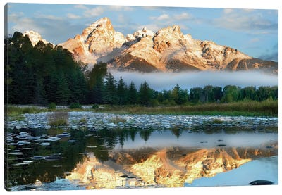 Pond Reflecting Grand Tetons, Grand Teton National Park, Wyoming Canvas Art Print