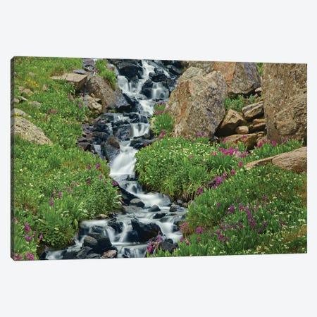 Porphyry Creek Near Silverton, Colorado I 3-Piece Canvas #TFI814} by Tim Fitzharris Canvas Art