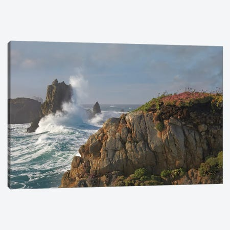 Pounding Waves And Rocky Shoreline At Piedras Blancas, California Canvas Print #TFI816} by Tim Fitzharris Canvas Artwork