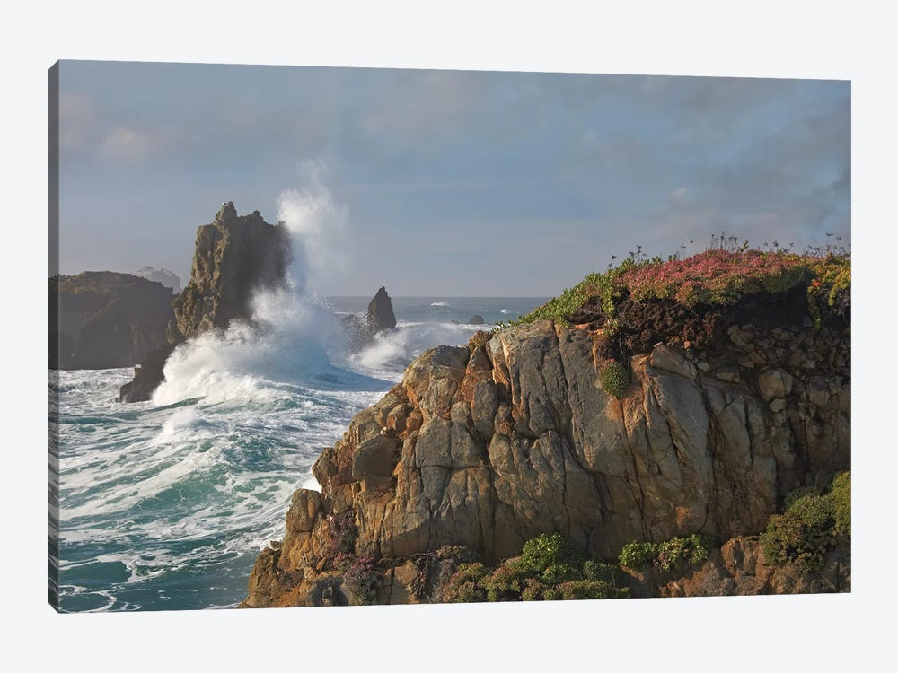 Pounding Waves And Rocky Shoreline At Piedras Blancas, California by Tim Fitzharris 1-piece Canvas Wall Art