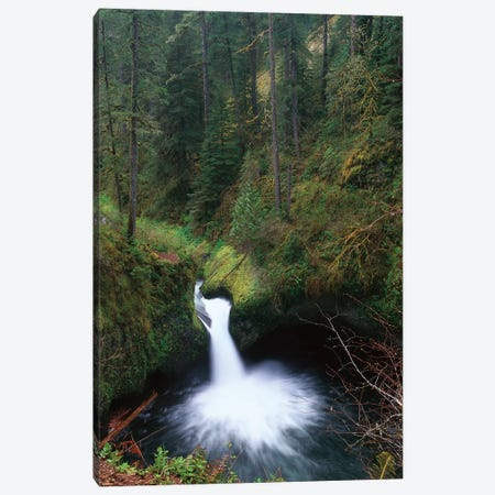 Punchbowl Falls At Eagle Creek, Columbia River Gorge, Oregon Canvas Print #TFI818} by Tim Fitzharris Canvas Art Print