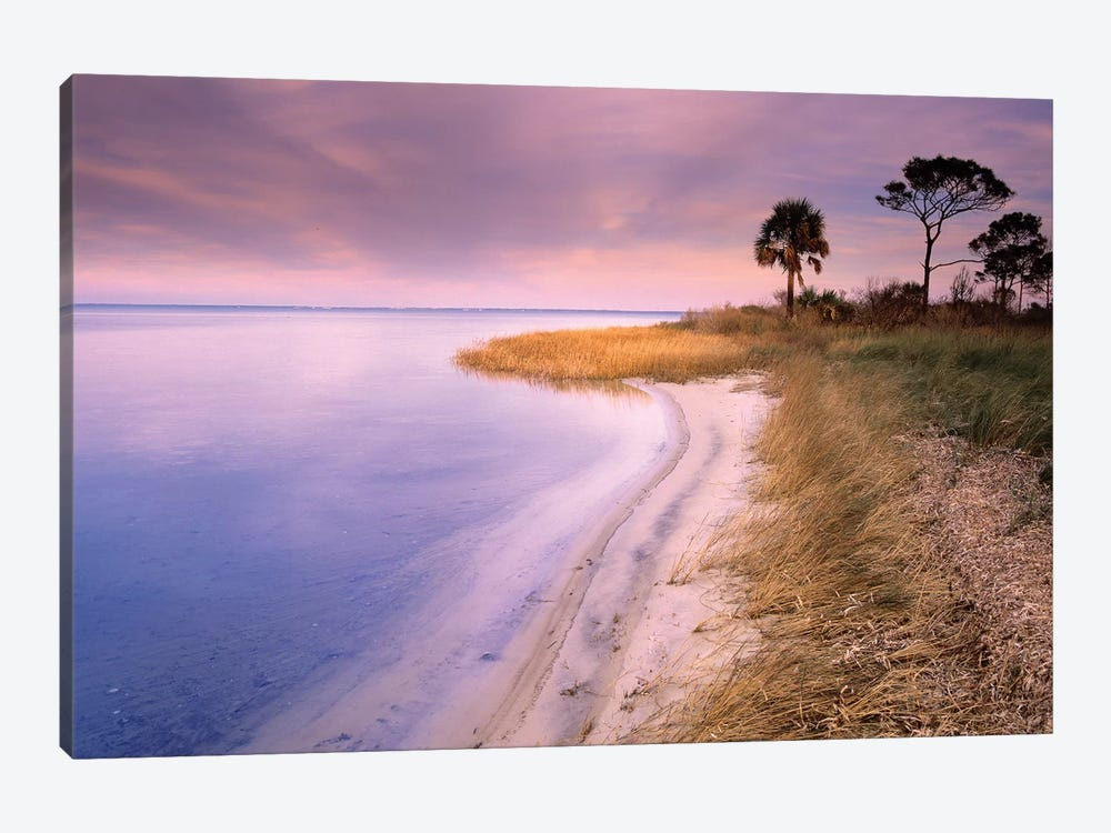 Beach Along Saint Joseph's Bay, Florida by Tim Fitzharris 1-piece Canvas Wall Art