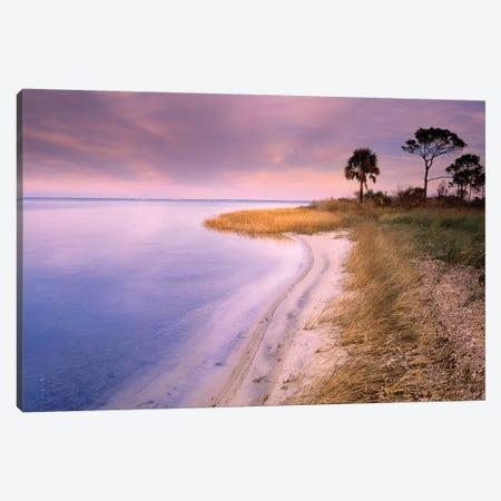 Beach Along Saint Joseph's Bay, Florida Canvas Print #TFI82} by Tim Fitzharris Canvas Wall Art