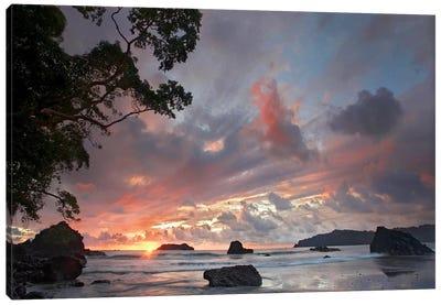 Beach And Coastline, Manuel Antonio National Park, Costa Rica Canvas Art Print