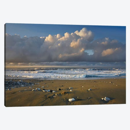 Beach And Waves, Corcovado National Park, Costa Rica Canvas Print #TFI84} by Tim Fitzharris Art Print